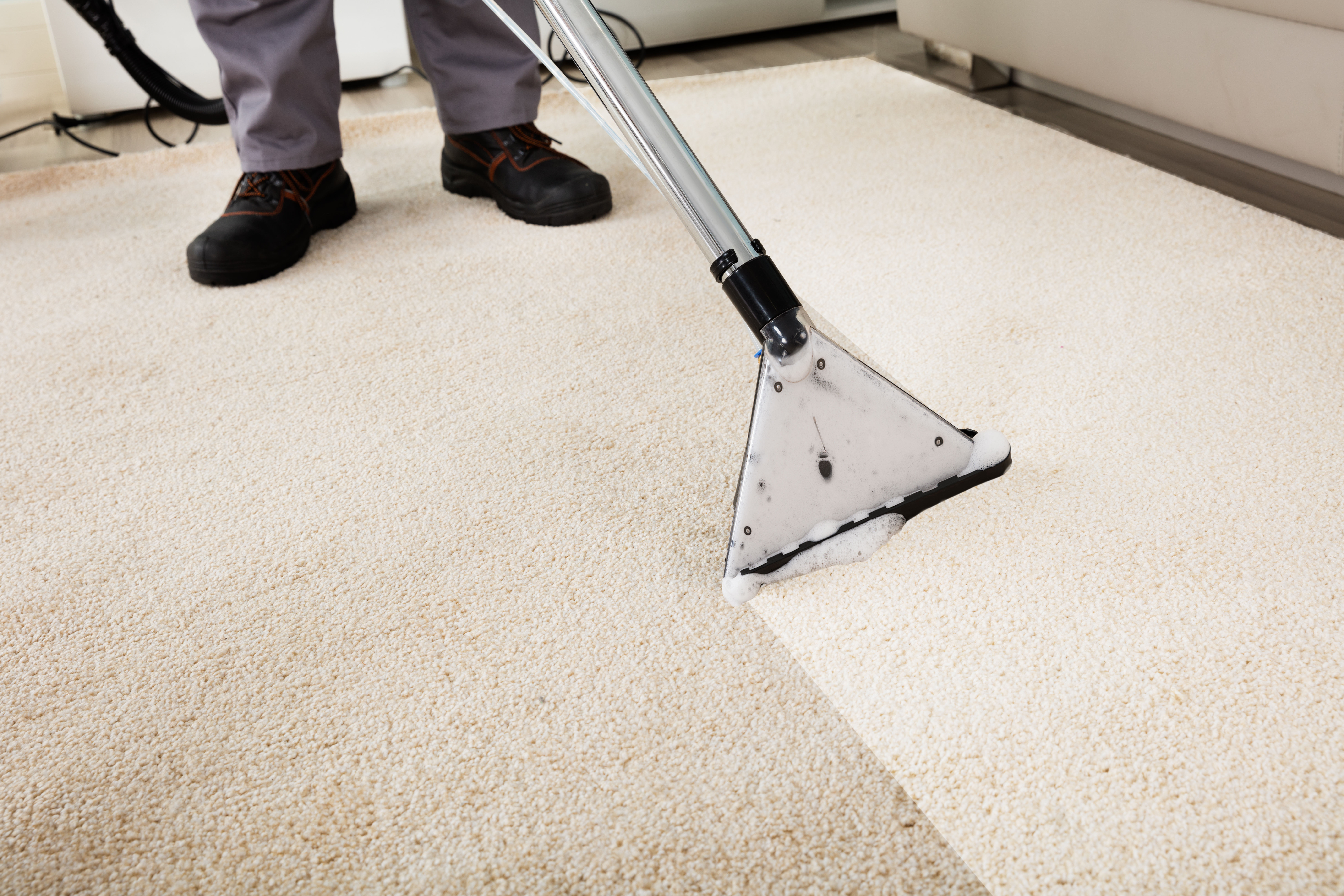 tristate carpet cleaning auburn angola indiana