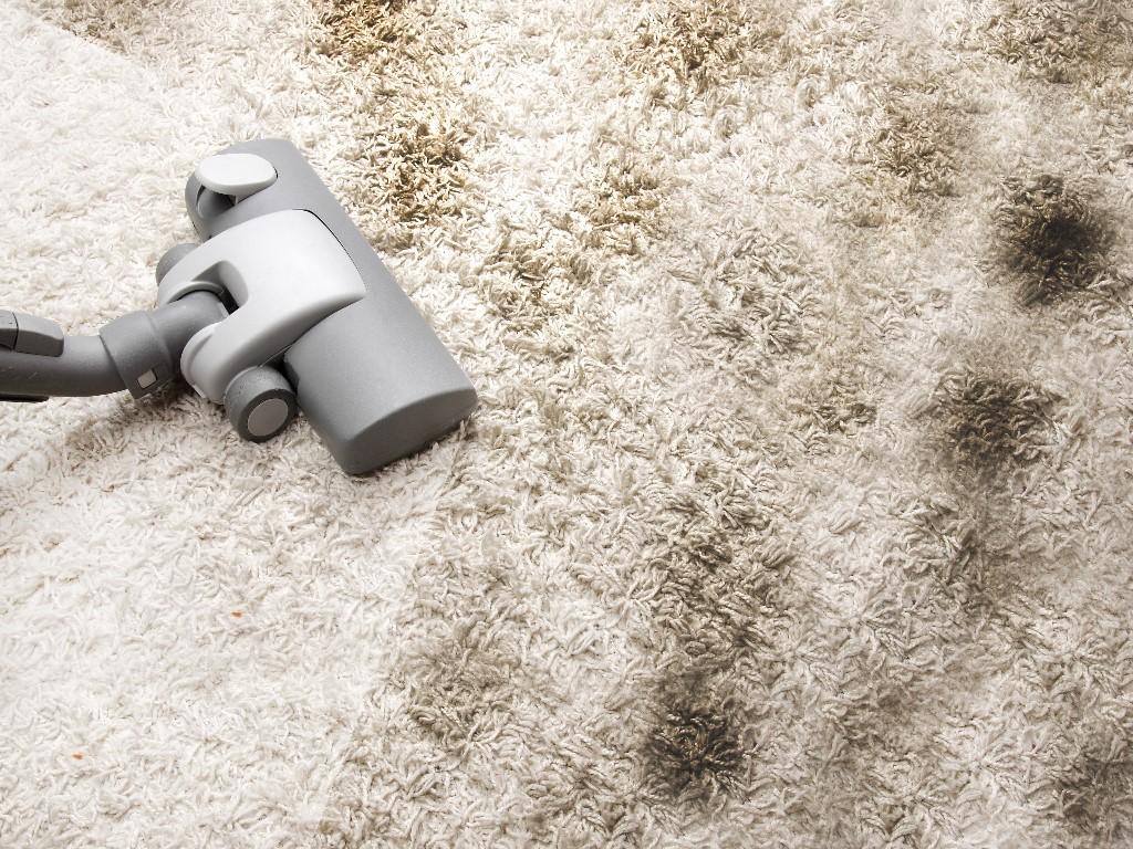 carpet masters fort wayne indiana carpet cleaning
