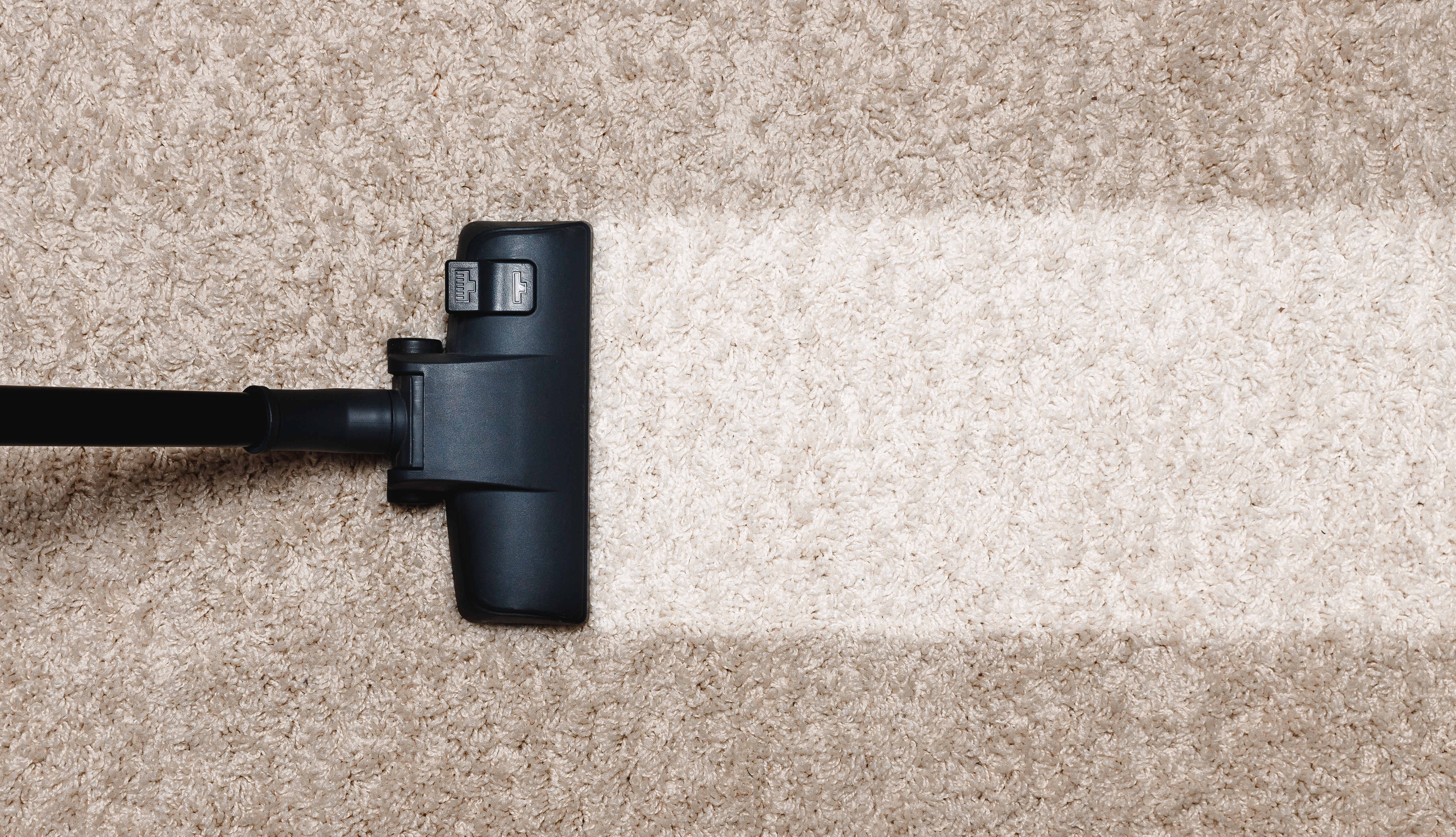 carpet cleaning, carpet cleaning, carpet masters, fort wayne indiana